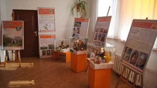 Gminny Ośrodek Kultury 2010-2015_3