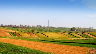 2012.04.29 Wiosna (Grabowiec Góra)