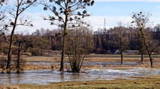 2016.01.29 - Grabowiec Góra, Bronisławka