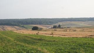 2013_39