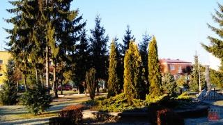 2011.11.30 Grabowiec - centrum (Jesień)