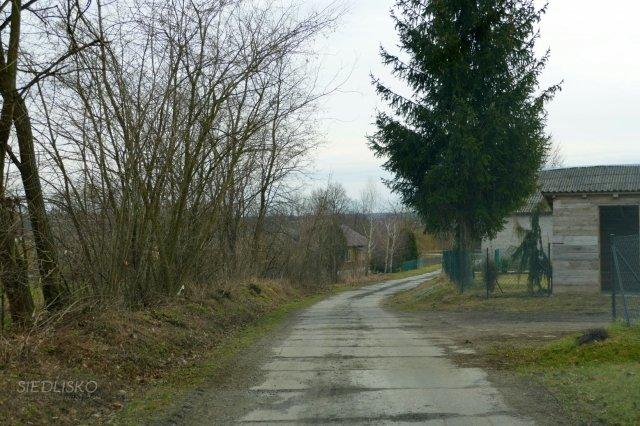 Siedlisko marzec - 2019_17